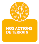 OLD'UP Actions de terrain